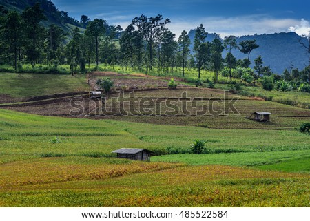 Panoramic,Beautiful view in countryside at Chiangmai.Thailand