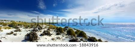 Panoramic Coastline on Sea Lion Island - stock photo