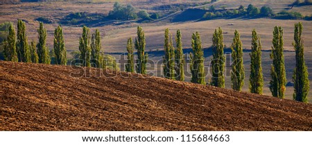 panoramic countryside landscape with several tree