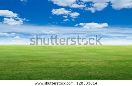 Panoramic field landscape. Summer background - stock photo