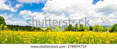 Panoramic flower field in spring, Remstal Germany - stock photo