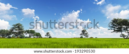 Panoramic Green Grass with cloud and the blue sky. 3d render - stock photo