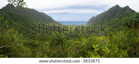 Panoramic image of a narrow tropical valley in Oahu - stock photo