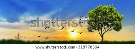 Panoramic landscape of countryside at sunset - stock photo