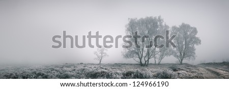 Panoramic landscape of isolated trees covered in frost against a backdrop of dense fog. The bright area in the sky is caused by the late afternoon sun. - stock photo
