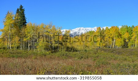 panoramic landscape view of the colorful alpine scenery with snow covered mountains during foliage season at Kebler and Ohio Passes - stock photo