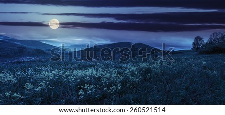 panoramic mountain summer landscape. yellow flowers on hillside meadow near village in mountains at night in full moon light - stock photo