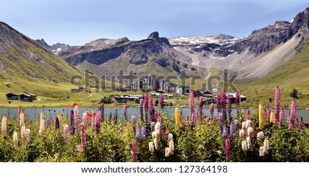 Panoramic photo of Tignes le Lac with lupine flowers in the foreground. Tignes is a commune in the Tarentaise Valley, Savoie department in the Rh�´ne-Alpes region in south-eastern France - stock photo
