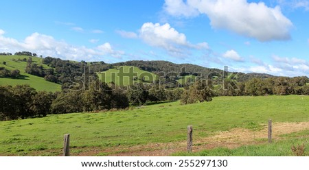 Panoramic scenic view of the   grassy  green  rural slopes of the Collie River Valley  Western Australia on a fine afternoon in  mid  winter enabling beef and sheep production to thrive. - stock photo