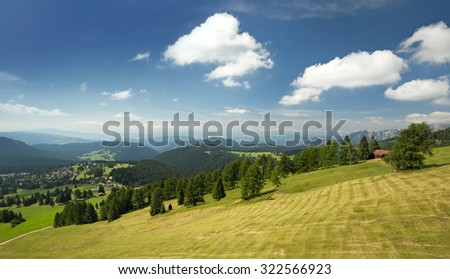 panoramic view of a green meadow in the Alps