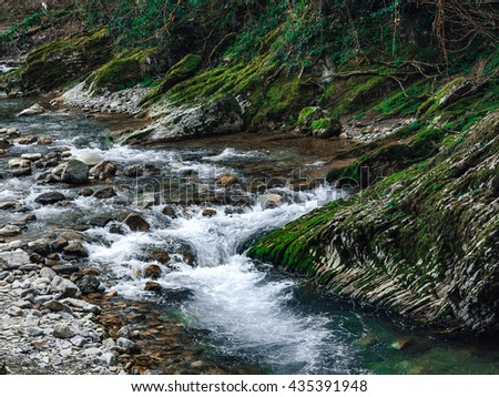 Panoramic view of a mountain river on a background of stones and thickets of boxwood