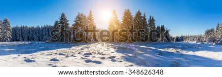 panoramic view of a winter landscape with snow and sunlight - stock photo