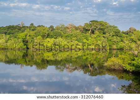 Panoramic view of amazon forest skyline and black river - stock photo