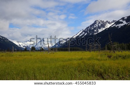Panoramic view of an open field under the snow capped mountains in Alaska