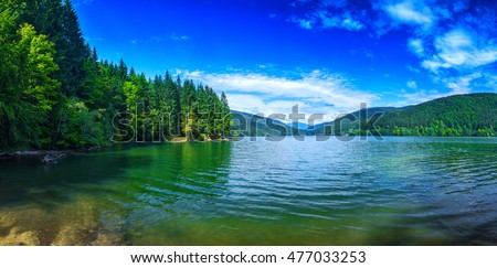 Panoramic view of beautiful lake and spruce forest in mountains at sunshine.