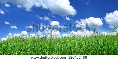 panoramic view of blissful grassland - stock photo