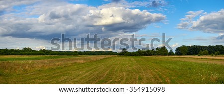Panoramic view of field near the forest under blue sky with white clouds under sunlight - stock photo