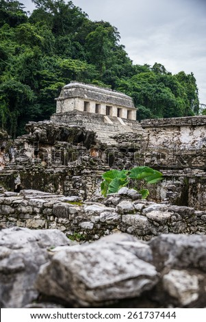 Panoramic View of Historic Mayan Site. Traveling Through Chiapas, Mexico. - stock photo