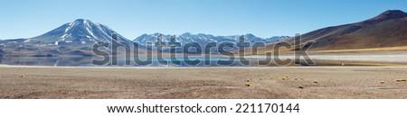 Panoramic view of Lagunas Miscanti and Meniques in Atacama desert - stock photo