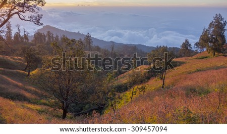 Panoramic view of Lombok island in Indonesia from 2,000m above sea level on the way to Rinjani at Plawangan Senaru. - stock photo
