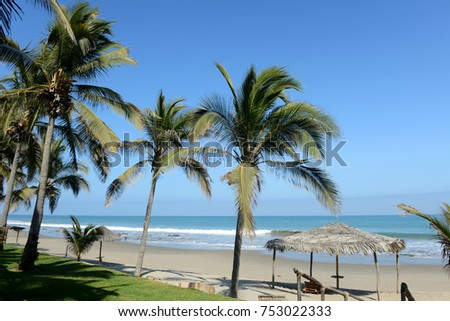 Panoramic view of Mancora, Peru with palm trees and blue skies