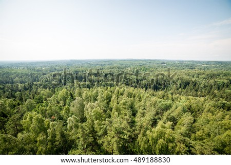 panoramic view of misty green forest. far horizon