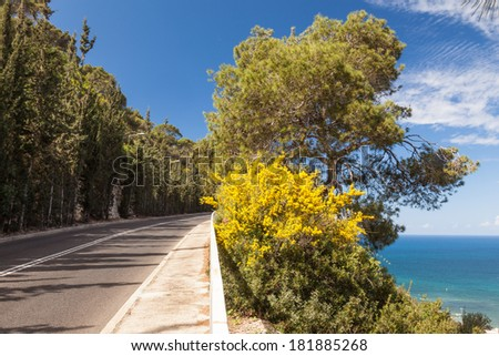 Panoramic view of mountain road with trees, cloudy sky and Mediterranean sea on the background, Stella Maris Road, Haifa, Israel. - stock photo