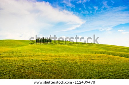 Panoramic view of scenic Tuscany landscape in Val d'Orcia, Italy - stock photo