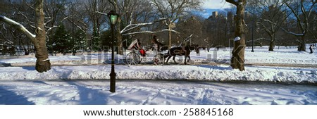 Panoramic view of snowy city street lamps, horse and carriage in Central Park, Manhattan, New York City, NY on a sunny winter day - stock photo