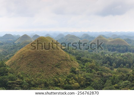 Panoramic view of the Chocolate Hills in Bohol, Philippines.