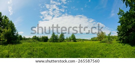 Panoramic view of the meadow with blue sky on bright sunny day at summer season. - stock photo