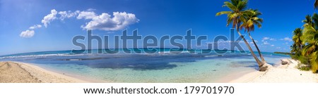 Panoramic view of tropical sand beach with palms - stock photo
