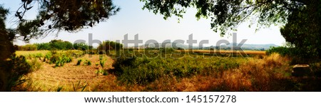 Panoramic view of typical Maltese country side in late spring looking out from near Kennedy Grove - stock photo