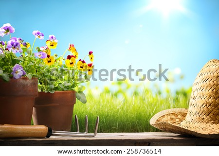 Pansy flower and gardening tools on wood,Copy space for your text. - stock photo