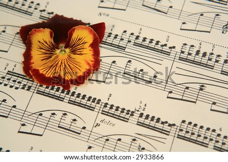 Pansy flower on sheet music