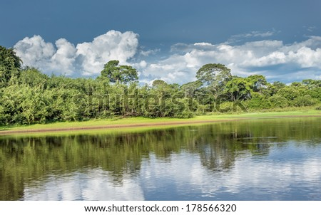 Pantanal landscape. Pantanal is one of the world's largest tropical wetland areas located in Brazil , South America  - stock photo
