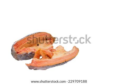 papaya rotten have fungus - stock photo