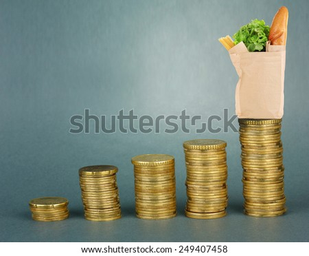 Paper bag with food standing on stack of coins on gray background - stock photo