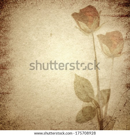 Paper texture, Brown paper background with dry rose