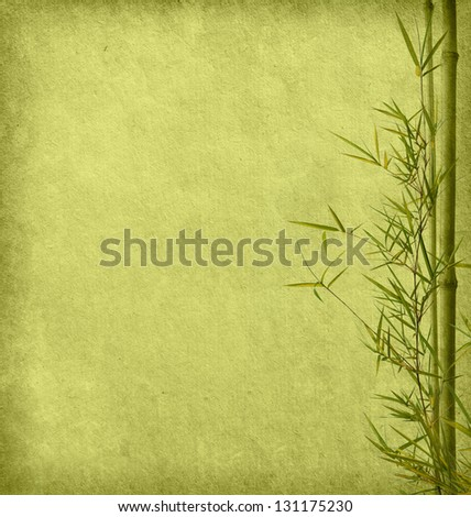 paper with branches of a bamboo - stock photo