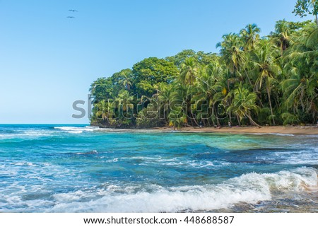 Paradise beach of Manzanillo Park in Costa Rica