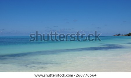 paradise beach on tropical island