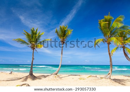 Paradise beach resort with palms and white sand - stock photo