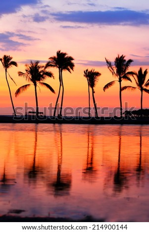 Paradise beach sunset with tropical palm trees. Summer travel holidays vacation getaway colorful concept photo from sea ocean water at Big Island, Hawaii, USA. - stock photo
