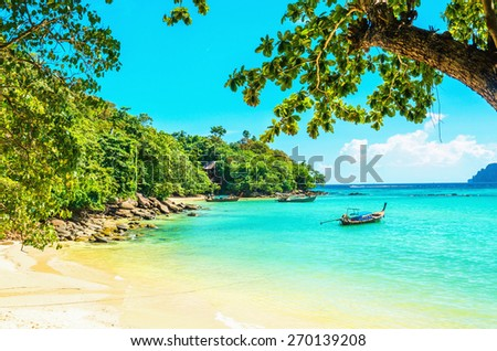 Paradise beach with with golden sand, exotic trees and blue sky - stock photo
