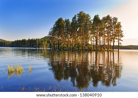 paradise forest sunrise - stock photo