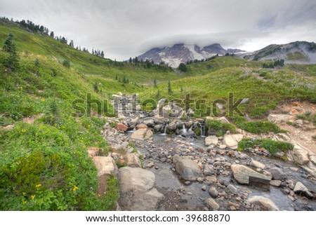 Paradise is the name of an area at approximately 5,400 feet (1,600 m) on the south slope of Mount Rainier in the national park. - stock photo