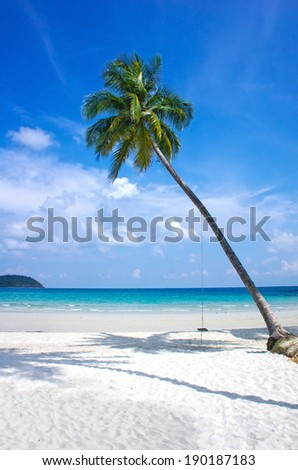 Paradise nature, sea, green lagoon and palm tree on the tropical beach.