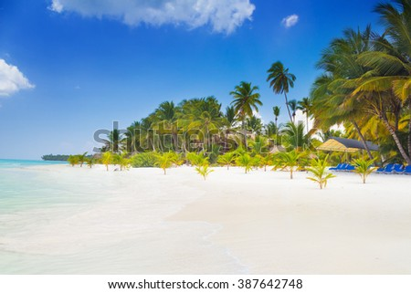 Paradise on earth, scenery of tropical beach on caribbean island Saona in Dominican Republic