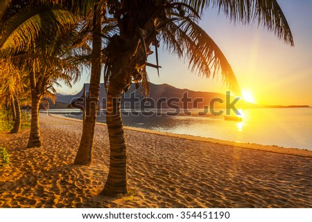 Paradise sandy beach with palm trees and mountains at sunset. Mauritius. - stock photo